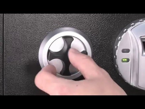 BioSecure Biometric Wall Safe by Barska
